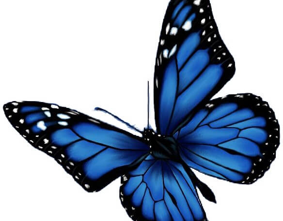 Logo Design Client: Monarch Professional Services